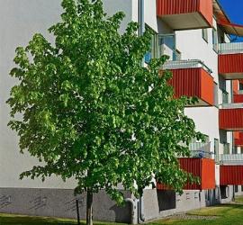 site de conseil en éco rénovation et économies d'énergies